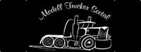Verein: Modelltrucker Seetal